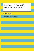 Cover-Bild zu Das Schloss Dürande. Textausgabe mit Kommentar und Materialien (eBook) von Eichendorff, Joseph von