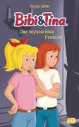 Cover-Bild zu Gürtler, Stephan: Bibi & Tina - Der mysteriöse Fremde