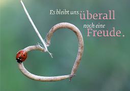 Cover-Bild zu Eschbacher Textkarte. Freude überall