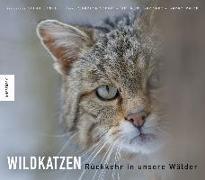 Cover-Bild zu Wildkatzen von Suchant, Rudi
