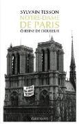 Cover-Bild zu Tesson, Sylvain: Notre-Dame de Paris