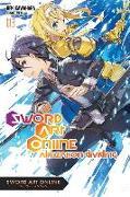 Cover-Bild zu Reki Kawahara: Sword Art Online, Vol. 13 (light novel)
