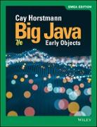 Cover-Bild zu Horstmann, Cay S.: Big Java