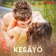Cover-Bild zu Kesäyö (Audio Download)