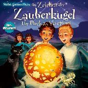 Cover-Bild zu Gemmel , Stefan: Im Zeichen der Zauberkugel: Der Fluch des Skorpions