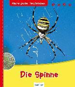 Cover-Bild zu Die Spinne von Vallet, Anne