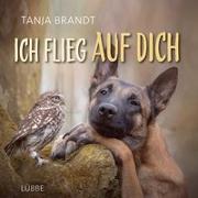 Cover-Bild zu Ich flieg auf dich von Brandt, Tanja