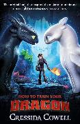 Cover-Bild zu Cowell, Cressida: How to Train Your Dragon FILM TIE IN (3RD EDITION)