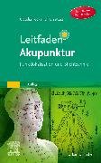 Cover-Bild zu Leitfaden Akupunktur von Focks, Claudia