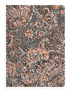 Cover-Bild zu Ladytimer Paisley 2022 - Taschenkalender A6 (11x15 cm) - Weekly - 192 Seiten - Notiz-Buch - Termin-Planer - Alpha Edition