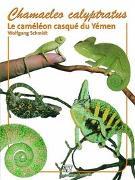 Cover-Bild zu Chamaeleo Calyptratus