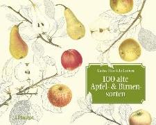 Cover-Bild zu 100 alte Apfel- und Birnensorten von Pfau-Schellenberg, Gustav