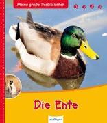 Cover-Bild zu Meine große Tierbibliothek: Die Ente von Hédelin, Pascale