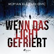 Cover-Bild zu Klementovic, Roman: Wenn das Licht gefriert (Audio Download)