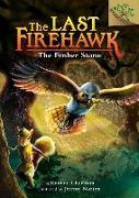 Cover-Bild zu Charman, Katrina: The Ember Stone: A Branches Book (the Last Firehawk #1) (Library Edition), 1