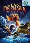 Cover-Bild zu Charman, Katrina: The Crystal Caverns: A Branches Book (the Last Firehawk #2) (Library Edition), 2