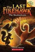 Cover-Bild zu Charman, Katrina: The Shadowlands: A Branches Book (the Last Firehawk #5), 5