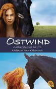 Cover-Bild zu Wimmer, Carola: Ostwind