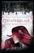 Cover-Bild zu Callihan, Kristen: Winterblaze (eBook)