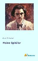 Cover-Bild zu Verlaine, Paul: Meine Spitäler