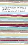 Cover-Bild zu Goethe, Johann Wolfgang von: Zahme Xenien