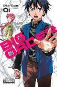 Cover-Bild zu Sakae Esuno: Big Order, Vol. 1