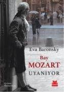 Cover-Bild zu Baronsky, Eva: Bay Mozart Uyaniyor