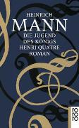 Cover-Bild zu Mann, Heinrich: Die Jugend des Königs Henri Quatre