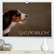 Cover-Bild zu Behr, Jana: Welpenblicke (Premium, hochwertiger DIN A2 Wandkalender 2021, Kunstdruck in Hochglanz)