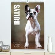 Cover-Bild zu Behr, Jana: Bullys mit Charme - Französische Bulldoggen im Portrait (Premium, hochwertiger DIN A2 Wandkalender 2021, Kunstdruck in Hochglanz)
