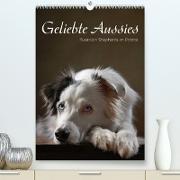 Cover-Bild zu Behr, Jana: Geliebte Aussies - Australian Shepherds im Portrait (Premium, hochwertiger DIN A2 Wandkalender 2022, Kunstdruck in Hochglanz)