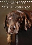Cover-Bild zu Behr, Jana: Bezaubernde Mischlingshunde (Tischkalender 2022 DIN A5 hoch)