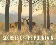 Cover-Bild zu Walden, Libby: Secrets of the Mountain