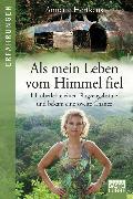Cover-Bild zu Als mein Leben vom Himmel fiel von Herfkens, Annette