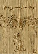 Cover-Bild zu 27885 Bambus Switzerland Hoch GVA_Swiss_Gree8ngs104