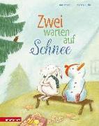 Cover-Bild zu Zwei warten auf Schnee von Kaiser, Jan