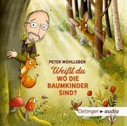 Cover-Bild zu Wohlleben, Peter: Weißt du, wo die Baumkinder sind?