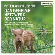 Cover-Bild zu Wohlleben, Peter: Das geheime Netzwerk der Natur