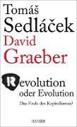 Cover-Bild zu Revolution oder Evolution von Sedlacek, Thomas
