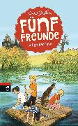 Cover-Bild zu Blyton, Enid: Fünf Freunde auf großer Fahrt (eBook)