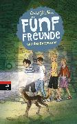 Cover-Bild zu Blyton, Enid: Fünf Freunde und das Burgverlies (eBook)