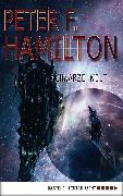 Cover-Bild zu Hamilton, Peter F.: Schwarze Welt (eBook)