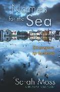 Cover-Bild zu Moss, Sarah: Names for the Sea: Strangers in Iceland