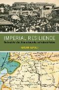 Cover-Bild zu Kayali, Hasan: Imperial Resilience (eBook)