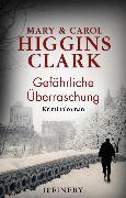 Cover-Bild zu Clark, Carol Higgins: Gefährliche Überraschung (eBook)