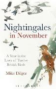 Cover-Bild zu Nightingales in November: A Year in the Lives of Twelve British Birds von Dilger, Mike