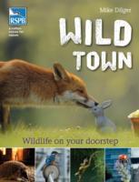 Cover-Bild zu Wild Town von Dilger, Mike