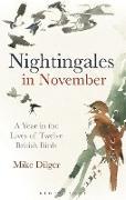 Cover-Bild zu Nightingales in November (eBook) von Dilger, Mike