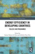 Cover-Bild zu Tavares Da Silva, Suzana (Hrsg.): Energy Efficiency in Developing Countries (eBook)