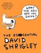 Cover-Bild zu Shrigley, David: What The Hell Are You Doing?: The Essential David Shrigley